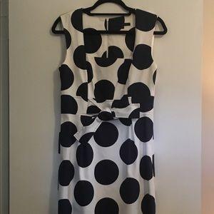 NWOT David Meister polka dot navy and white dress
